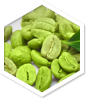 Green Coffee MD<sup>™</sup> ingredient 1